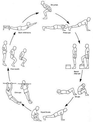 circuito educacion fisica