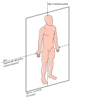 633px-Plano_anatomico_Frontal.svg