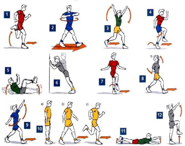Qué es la movilidad articular: definición y ejercicios | PEDRO ...