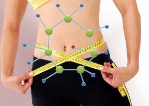 metabolismo-300x214